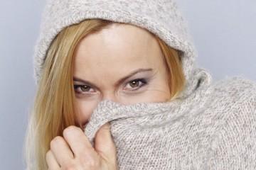 donna freddo