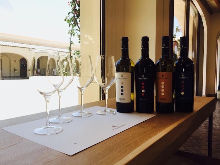 Gorhi Tondi vitivinicola